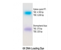 Nucleic Acid Sample Loading Buffer, 6X Liquid Concentrate- 1 ml