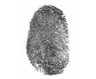 Whose Fingerprints Were Left Behind?